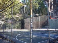 the cage la jaula s