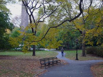 central park 350