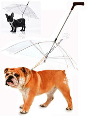 paraguas perros dog umbrella 4 s