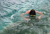 croacia dia3 08 snorkel esteban mljet s