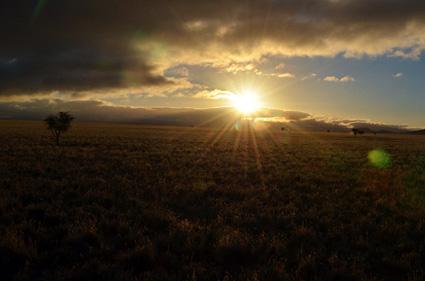 morning light 2 namibrand nature reserve DSC_0483 s