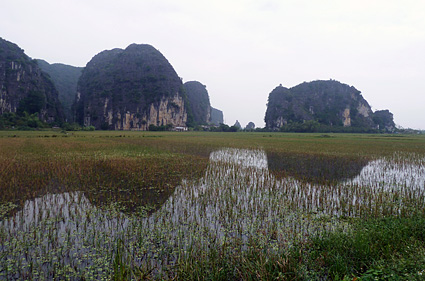 tam coc arrozales P1100346 s