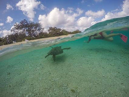 floating in emerald sea ii